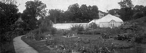Herbaceous Garden 1899