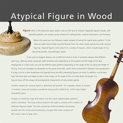 Atypical Figure in Wood