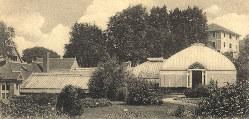 Lyman Plant House