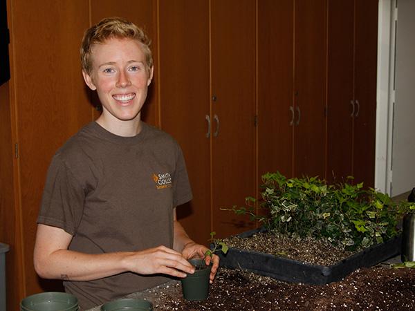 Summer intern Maggie Kraus potting ivy cuttings