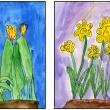 watercolor paintings of flowering bulbs