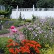 Herb Garden before the 2016 garden renovation