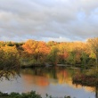 fall foliage along Paradise Pond