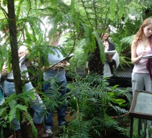 class visiting the fern house
