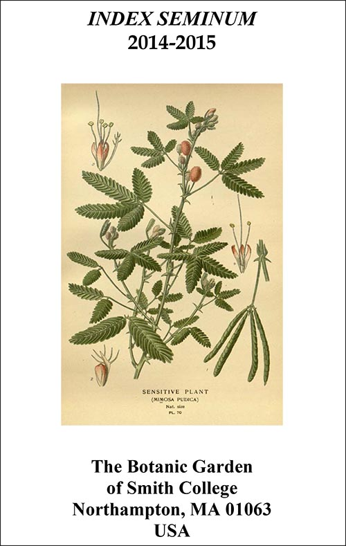 Cover of 2014-15 Seed list, featuring the sensitive plant