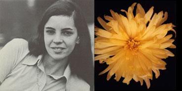 Anne Burnham Thistle, 1971