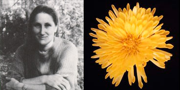 Brenda McGovern, 1992
