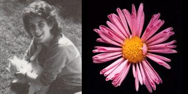 Eileen Anderson, 1984