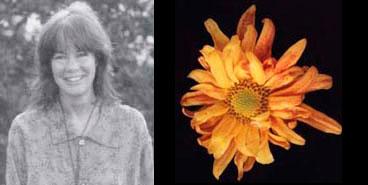 Gail Otis 1995