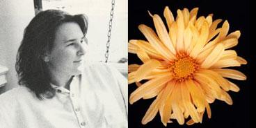 Jill Seward, 1988