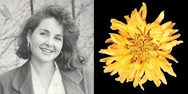 Rebecca Rabinow, 1988
