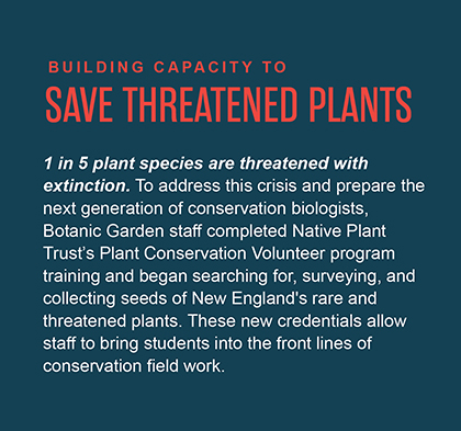 One in five plant species are threatened with extinction. To address this crisis and prepare the next generation of conservation biologists, Botanic Garden staff completed Native Plant Trust's Plant Conservation Volunteer program training and began searching for, surveying, and collecting seeds of New England's rare and threatened plants. These new credentials allow staff to bring students into the front lines of conservation field work.