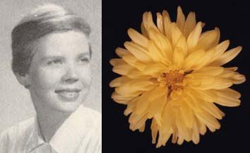 Ann Canfield Smart, 1956