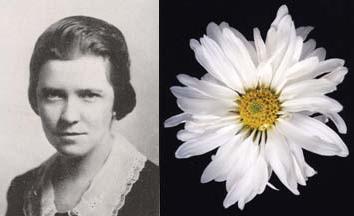 Helen Cole Downey, 1920