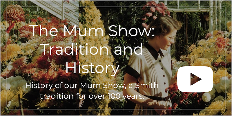 Mum Show History and Tradition Video image