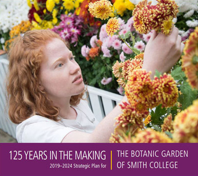 The 2019- 2024 Strategic Plan cover photo of a student and chrysanthemums