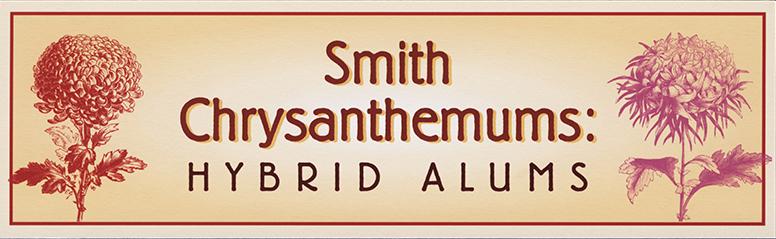 Hybrid Alums