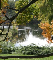 A view from the admission building of Paradise Pond