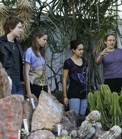 Class studying in the Succulent House