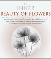 The Inner Beauty of Flowers, image of flower x-ray