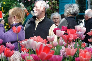 Smith College Bulb Show 2020.The Botanic Garden Of Smith College