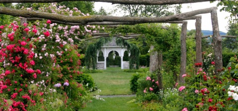 apen Garden rose arbor and gazeebo