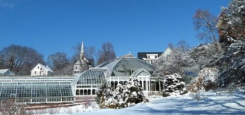 Lyman Conservatory in winter
