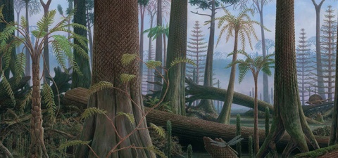 plant evolution mural panel 5 Carboniferous coal swamp forests