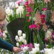 child pointing at flowers