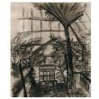 Fern House charcoal study by Kiersten Wulff Smith College '13