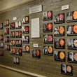 Smith Chrysanthemums: Hybrid Alums Hall of Fame photos