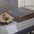 Display case with books on loan from the Mortimer Rare Book Room, Smith College. Left : Chrysanthemums. Six Etchings by Gloria Seaman. Chinese & Japanese Poems., right: Chrysanthemum indicum: watercolor, 1866 (now known as Dendranthema indica) by Emily Hitchcock Terry