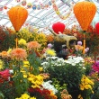 chrysanthemums with dragon sculpture and lanterns