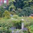 Annuals along the fence in 2004, before the renovation of the Systematics Garden