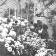 Three Students at the Mum Show, 1925