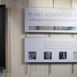 Title and intro panels to Plant Adaptation Up Close: A Biological and Artistic Interpretation