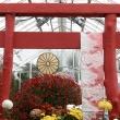 Torii Gate at Mum Show