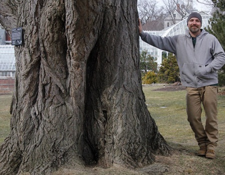 Botanic Garden Chief Arborist Benjamin Green