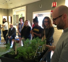 Italian class with fennel plants