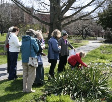 Tour of Systematics Garden