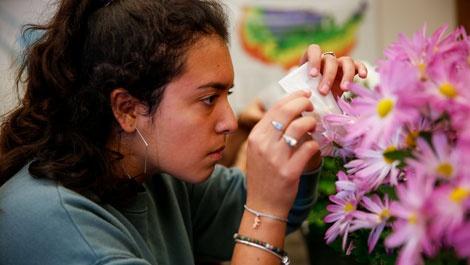 Denisse Manzo Gonzalez, '22 hybridizing a mum during horticulture class.