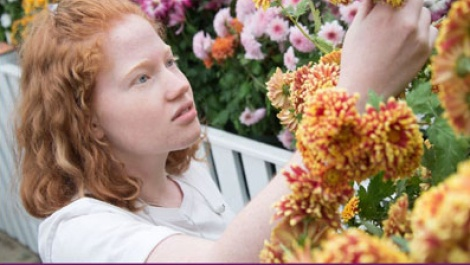 Cover photo for the Botanic Garden Strategic Plan featuring Smith student and chrysanthemums