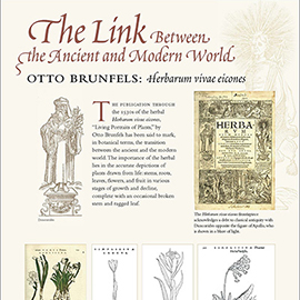 The Link Between the Ancient and Modern World information panel