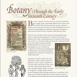 Botany Through the 16th Century information panel