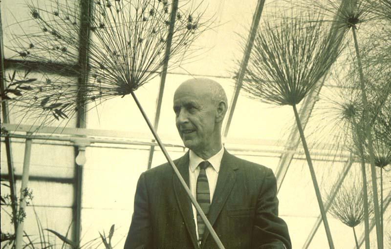 William I. P. Campbell