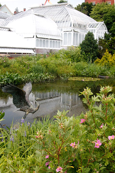 greenhouses with pond and heron sculpture