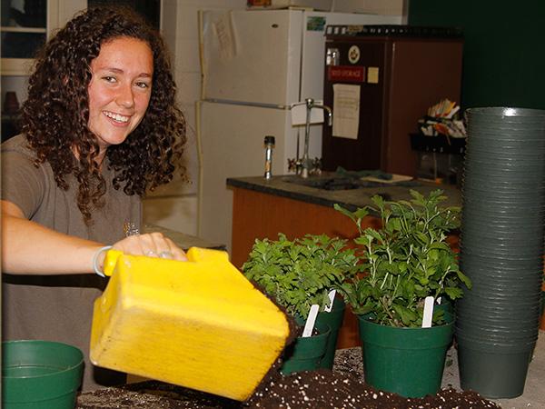 Summer intern Eva Steinberg potting mums