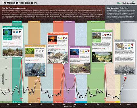 Poster on mass extinctions