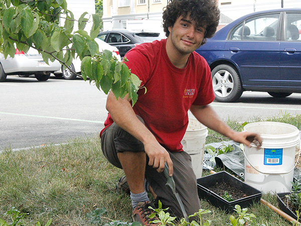 Summer intern Joey Staluppi planting groundcover plants