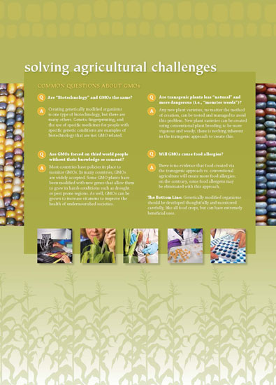 Maize - Solving Agricultural Challenges Panel